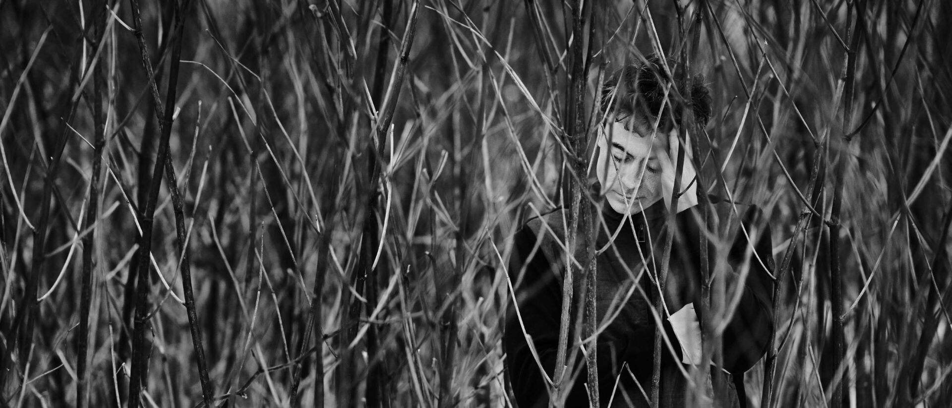 Professional photo of Paul Lewis posed in amongst a field of reeds